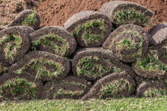 Grass Sods Rolled Pieces. Grass sods square cuts rolled and stacked ready for placing or planting.Close-up photo of layers or square pieces of grass and soil and Stock Photo