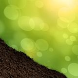 Grass and soil Stock Photography