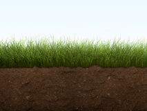 Grass and soil. Green grass and soil like background stock image