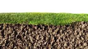 Grass and soil Royalty Free Stock Photos