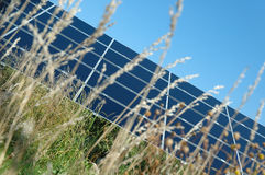Grass before solar power station Royalty Free Stock Photo