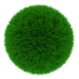 Grass sphere Stock Photos
