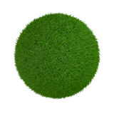 Grass sphere. One sphere made of grass on white background (3d render Royalty Free Stock Image