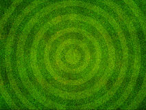Grass Sports Field Top View. Green grass texture from a sports field with circular pattern Royalty Free Stock Image