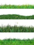 Grass Spring Set Clip Art Environment