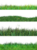 Grass Spring set clip art environment. Green Grass on white background, Spring grass set, four different green grass stripes, environment day clip art. Realistic vector illustration