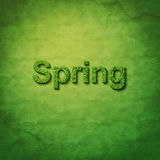 Grass spring word. On green sackcloth Stock Images