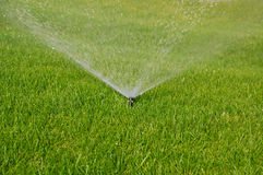 Grass sprinkler Royalty Free Stock Image