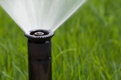 Grass sprinkler. Detail of a working lawn sprinkler head watering the grass Stock Photo