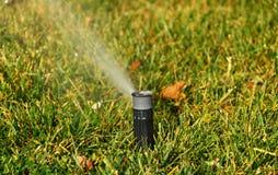 Grass sprinkler Stock Image