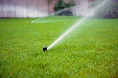 Free Grass Sprinkler Closeup Photo Royalty Free Stock Image - 51152956