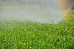 Grass sprinkler and rainbow Stock Images