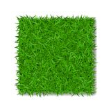 Grass square 3D. Beautiful green grassy field, isolated on white background. Lawn abstract nature texture. Symbol of. Natural, fresh leaf, meadow plant, spring Royalty Free Stock Images
