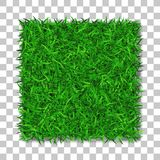 Grass square 3D. Beautiful green grassy field, isolated on white transparent background. Lawn abstract nature texture. Symbol natural, fresh, meadow plant Stock Images