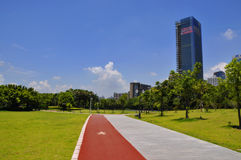 The grass square. There is a large city in central square the grass Royalty Free Stock Images