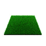 Grass squared Stock Image