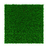 Grass squared Stock Photography
