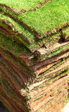 Grass squares. Grass sod/turf squares ready for planting lawn Royalty Free Stock Photos