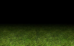 Grass at the stadium. Stock Photos
