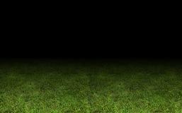 Grass at the stadium. A close-up as background Stock Photos