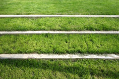 Grass Steps Royalty Free Stock Photos
