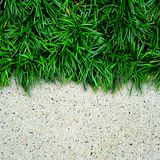 Grass and stone Stock Photo