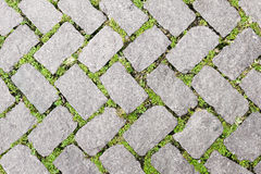 Free Grass Stone Floor Texture Pavement Design Royalty Free Stock Photo - 78645055