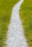 Grass and stone path. Green and grey texture. Stock Image
