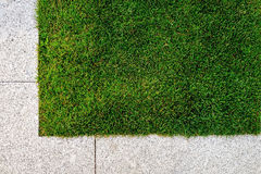 Grass and stone pavement. Copyspace with green grass and stone pavement royalty free stock photography