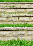 Grass and stone steps Royalty Free Stock Photos