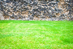 Grass and stone wall Stock Image