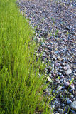 Grass and stones. Line the grass along stones Stock Photography