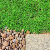 Grass stones texture Royalty Free Stock Photos