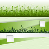 Grass strip Royalty Free Stock Photos