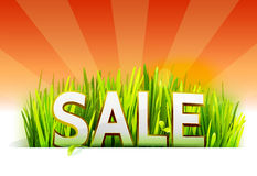 Grass with summer sale offer at red backdrop Royalty Free Stock Photography