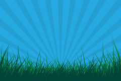 Grass with sun burst effect Royalty Free Stock Image