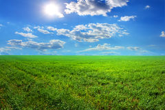 Grass sun clouds. Grass sun and clouds, beautiful nature daylight Stock Photo