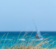 Grass and surf Stock Photography