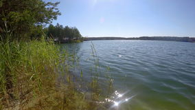 Grass sways in the wind on a blue lake stock video