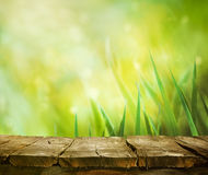 Grass with table Stock Photography