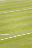 Grass tennis court Stock Images