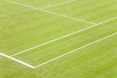 Grass tennis court. Detail of white lines on a grass tennis court Royalty Free Stock Photos