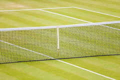 Grass tennis court. Closeup of a lawn tennis court with net and lines Royalty Free Stock Photography