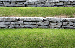 Grass terraced Stock Photography