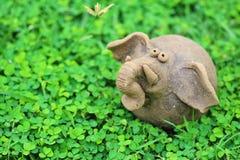 Grass, Terrestrial Animal, Organism, Plant Stock Photography