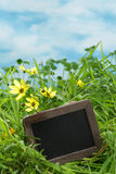 Grass with text board Royalty Free Stock Image