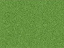 Grass texture Stock Images