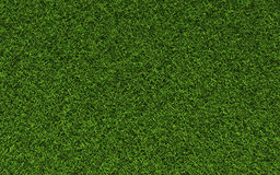 Grass Texture. Realistic Grass Texture Hi-resolution Royalty Free Stock Photography