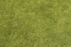 Free Grass Texture Stock Images - 46217414