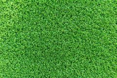 Grass texture background for golf course, soccer field or sports concept design. Artificial green grass stock image